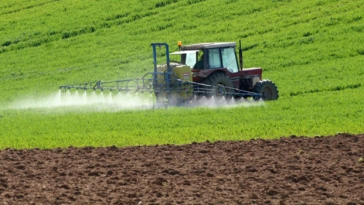 İsrail Türkiye'den tarım ürünü ithalatını dondurdu