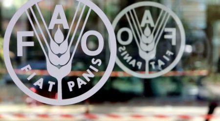 2017'de gıda fiyatları yüzde 8 arttı