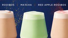 Starbucks'tan çay ve latte sevenlere özel yeni lezzetler