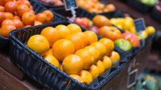 Meyve üretiminde artış bekleniyor